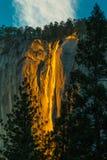 Horsetail Fall. Horsetail  Fall aka Firefall At El Capitan, Yosemite National Park, California Royalty Free Stock Photos