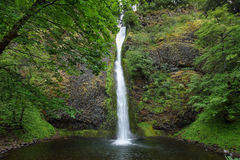 Horsetail falls. in Columbia River Gorge stock photos