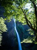 Horsetail Falls in Columbia River Gorge, Oregon, USA royalty free stock image