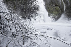 Horsetail falls Frozen in Winter with Tree Branche Stock Image