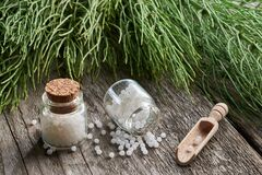 Free Horsetail Healing Herb And Two Bottles Of Homeopathic Globules. Homeopathy Royalty Free Stock Images - 169886379