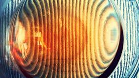 Horsetail infusie in een glaskop Royalty-vrije Stock Fotografie