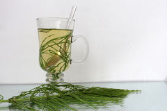 Horsetail tea Stock Photos