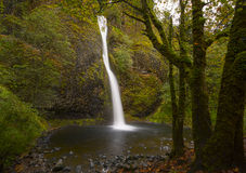 Horsetail valt… één van de vele mooie watervallen in de kloof van Colombia Stock Afbeeldingen
