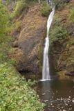 Horsetail valt de Rivierkloof Oregon van Colombia Stock Foto