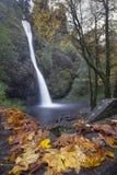 Horsetail valt Oregon in Daling royalty-vrije stock foto