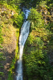 Horsetail waterfalls in Columbia gorge Stock Image