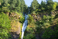 Horsetail waterfalls in Columbia gorge Royalty Free Stock Photography