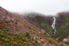 Horsetailen faller Queenstown Tasmanien Fotografering för Bildbyråer