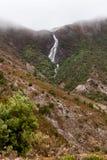 Horsetailen faller Queenstown Tasmanien Arkivfoton