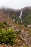 Horsetailen faller Queenstown Tasmanien Royaltyfri Bild