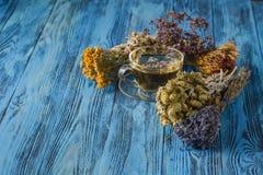 Horsetailinfusion in einem Glascup Kräuter und Blumen, Kräutermedizin lizenzfreies stockbild