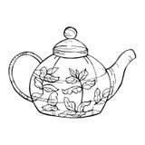 Horsetailinfusion in einem Glascup Von Hand gezeichnete Teekanne Auch im corel abgehobenen Betrag Stockbild