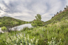 Horsetooth Reservoir in springtime Royalty Free Stock Photography