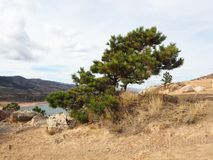 Horsetoothreservoir in Fort Collins Colorado royalty-vrije stock foto's