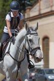 Horsewoman штрихует лошадь на шеи после гонки Стоковое фото RF