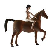 Horsewoman Royalty Free Stock Images