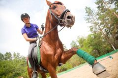 Horsewoman Royalty Free Stock Photography