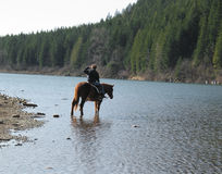 The Horsewoman. A woman on horseback scans a lake in Washington state Royalty Free Stock Photos