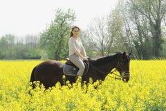horsewoman Imagem de Stock Royalty Free