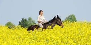 horsewoman стоковая фотография rf