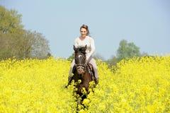 horsewoman Fotos de Stock