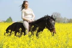 horsewoman Foto de Stock