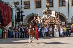 horsewoman Stockfotos