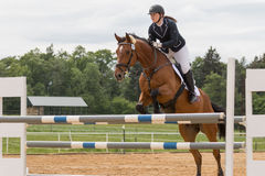 Horsewoman in black jacket jumping on brown horse Stock Images
