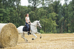 Horsewoman galloping Royalty Free Stock Photo