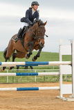 Horsewoman in high jump over a obstacle. Vertically. Royalty Free Stock Images