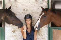 Horsewoman with his horses Stock Photos