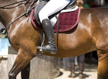 Horsewoman on horse. A horsewoman ready for a equestrian competition Stock Photo