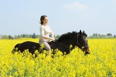 Horsewoman Royalty Free Stock Photos