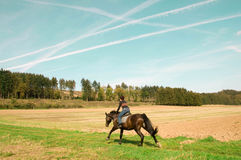 Horsewoman rides full speed. Royalty Free Stock Images