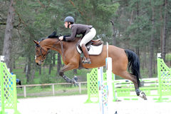 Horsewoman in show jumping Stock Photo