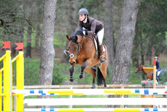 Horsewoman in show jumping Royalty Free Stock Image