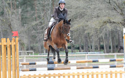 Horsewoman in show jumping Stock Photography