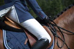 Horsewoman in uniform Royalty Free Stock Photo