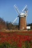 Horsey Windpump, Norfolk, Anglia - Zdjęcia Royalty Free