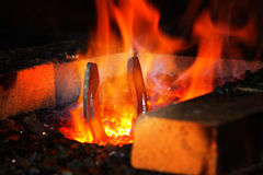 Horshoe setting in a fire for harding Royalty Free Stock Image