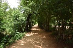Horsley小山,安得拉邦,印度 免版税库存照片