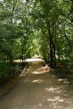 Horsley kullar, Andhra Pradesh, Indien arkivfoton
