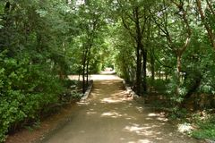 Horsleyheuvels, Andhra Pradesh, India Royalty-vrije Stock Foto