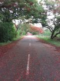 Horsleyheuvels, Andhra Pradesh, India Stock Foto