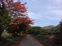 Horsleyheuvels, Chittoor, Andhra Pradesh Stock Foto's