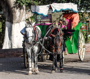 Horst drawn carriage Stock Photo