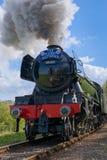 HORSTED KEYNES, SUSSEX/UK - 13 APRIL: Het vliegen Scotsman op Bl royalty-vrije stock afbeelding