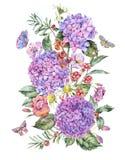 Hortênsia cor-de-rosa do verão da aquarela, camomila, bagas ilustração stock