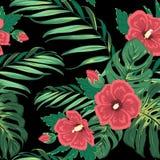 Hortaliças florais da selva do paraíso tropical exótico Fotografia de Stock